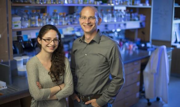Brandt Eichman, Ph.D., Diana Chavez